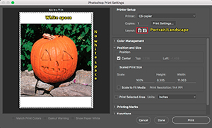 carving a pumpkin Photoshop style